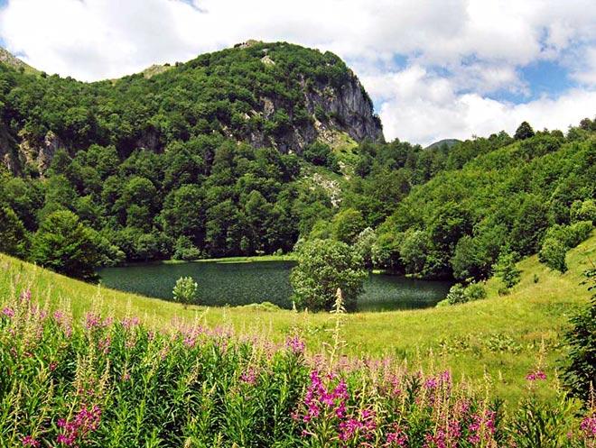 sutjeska_jezero_donje_bare.jpg